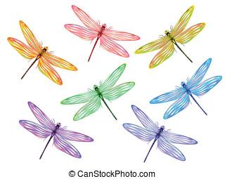 multicolor, libélulas