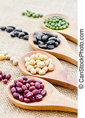Multicolored beans in wooden spoon.