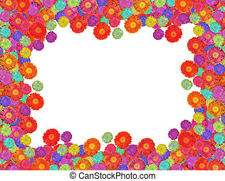 multicolored dahlia flowers frame isolated on white collage