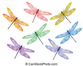 Multicolored dragonflies - Set from seven multicolored...