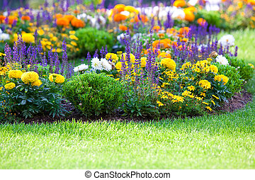 multicolored flowerbed on a lawn. horizontal shot. small...