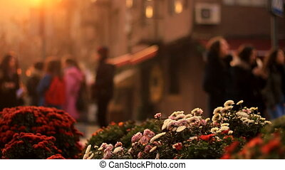 Multicolored focused flowers on a background of a blurred city landscape with walking people in golden Sunset. Romance background