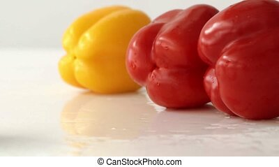Multicolored pepper drops on white wet mirror surface in...