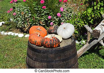 Multicolored pumpkins on a wooden barrel