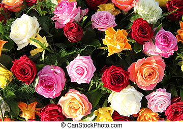 Multicolored roses in flower arrangement
