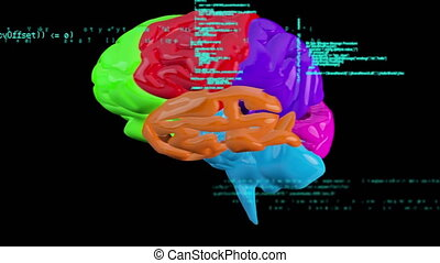 Multicolored rotating brain - Digital animation of a ...