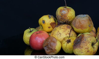 Multicolored rotten spoiled ripened apples on black...