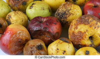 Multicolored rotten spoiled ripened apples rotating on white...