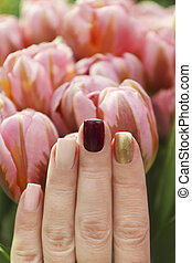 Multicolored short manicure with a brilliant golden, dark burgundy and pastel light nail polish.