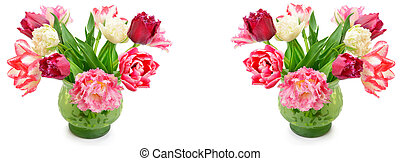 Multicolored tulips in a vase, isolated on white background. Wide photo.