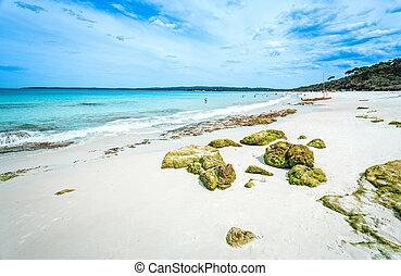 multidões, apreciar, a, idyllic, praia, em, verão