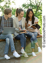 Multiethnic group of young concentrated students - Photo of...