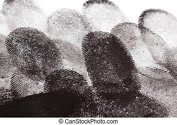 Multiple Fingerprints