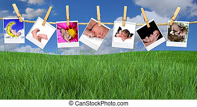 Multiple Infant Images Hanging Outdoors on a Clothesline -...