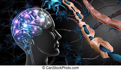 Multiple Sclerosis Nerve Disorder