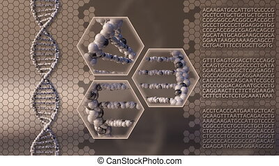 Multiple spinning DNA molecules brown motion background....