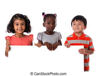 multiracial, board., odizolowany, portret, grupa, dzieciaki, biały