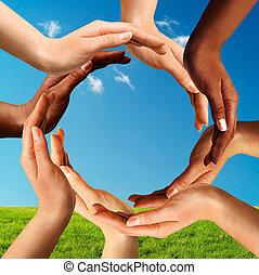 multiracial, elaboración, círculo, juntos, manos