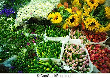 multitud, de, color, flores, en, el, venta al por mayor,...