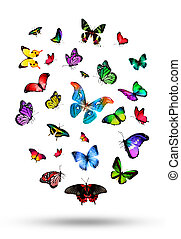 multitud, mariposas