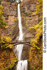 multnomah faller, vattenfall, höst, falla, bro, columbia flod proppa, oregon, stilla havet nordväst