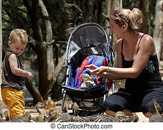 mum and son - mother and son feeding ducks wit their pram