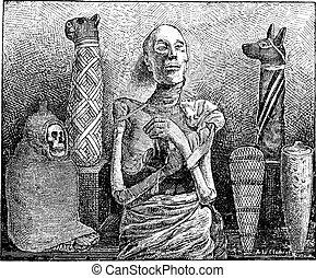 Mummies, vintage engraving - Mummies, showing various,...
