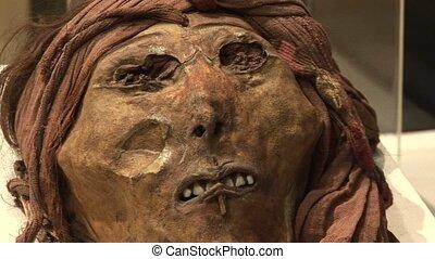 Mummy (Southamerica)