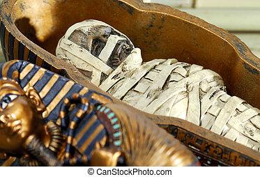 Mummy - Eygptian Mummy