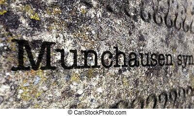 Munchausen syndrome disease