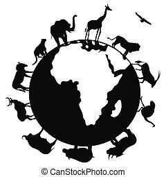 mundo, áfrica, ao redor, animal