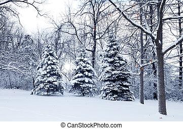 mundo maravilloso, invierno