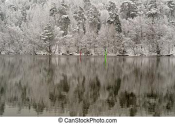 mundo maravilloso, vendimia, invierno