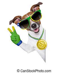 mundo, perro, fifa, taza, brasil