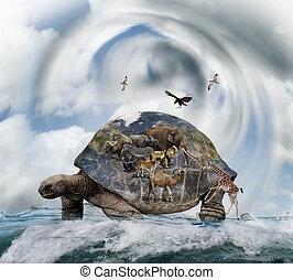 mundo, tortuga, concepto