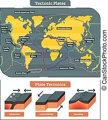 mundo, vector, colección, tectónico, placas, mapa, diagrama