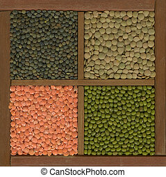 mung bean and lentils (red, green, French) in a box - mung ...