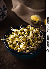 Mung bean sprouts in a bowl on dark wooden board with eggs