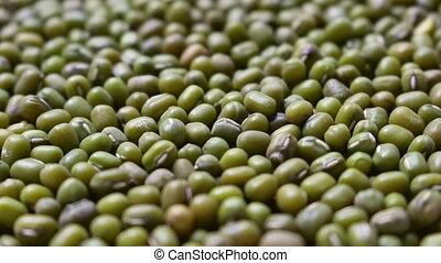 Mung beans background, rotation shot