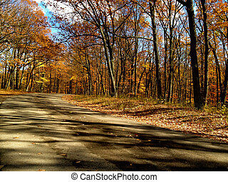 município marrom, estrada