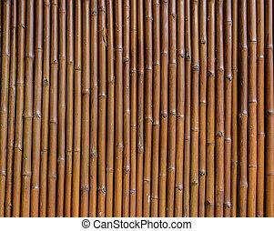 mur, bambou, fond