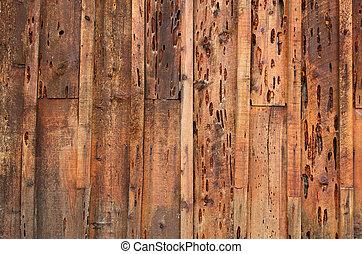 mur, bois, holey