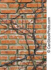 mur, branches, brique, arbre