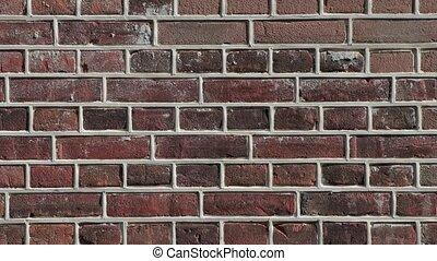 mur, brique, closeup
