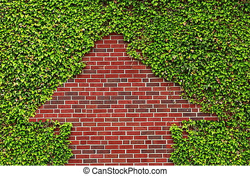 mur, brique, lierre