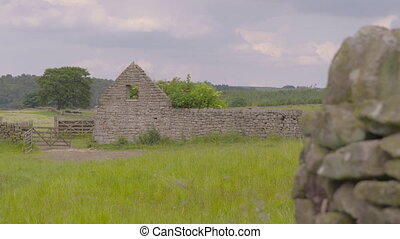mur, champ vert, brique