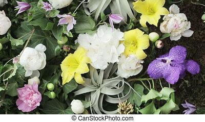mur, fleurs