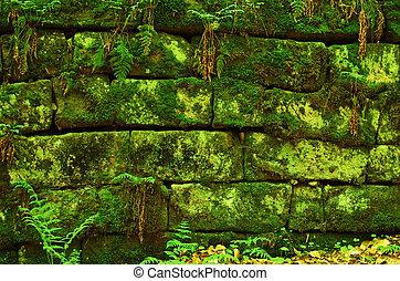 mur, moussu, arrière-plan vert