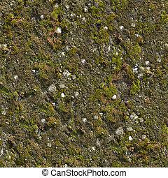 mur, moussu, seamless, texture.