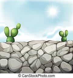 mur, pierre, cactus, scène